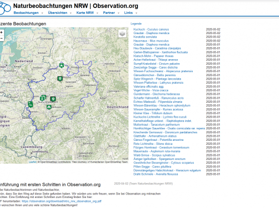 nrw.observation.org